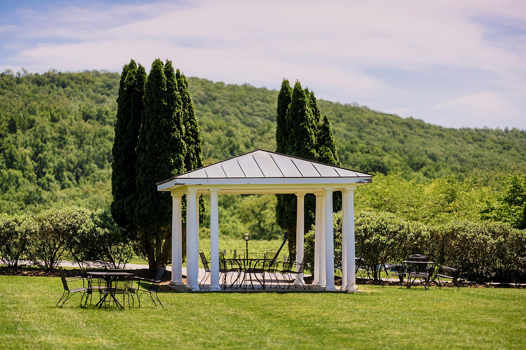 breaux vineyards winery seating in the summer at wedding by Washington DC Wedding Photographer Adam Mason